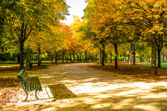 Tiergarten Берлин Стоковое фото RF
