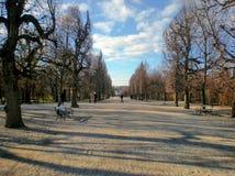 Стенд в парке осени стоковое фото
