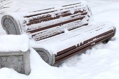 Стенд в снежке Стоковая Фотография RF
