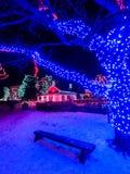 Стенд зимы рождества Стоковое фото RF