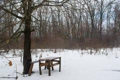 Стенд и таблица среди деревьев в темном туманном лесе зимы стоковое изображение