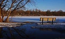 Стенд парка в осени Стоковая Фотография RF