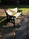 Стенд парка в осени Стоковые Изображения RF