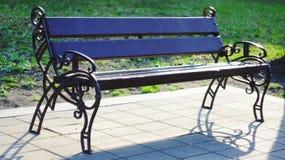 Стенд парка в осени Стоковое Фото