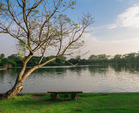 Стенд под деревом около озера Стоковая Фотография RF