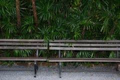 Стенд сада Стоковые Изображения