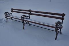 стенд сиротливый Зима Стоковые Изображения RF