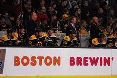 Стенд Топтыгинов Бостона Стоковое Изображение RF