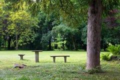 Стенды и таблицы в парке Стоковые Изображения