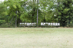 Стенды среди деревьев стоковое изображение