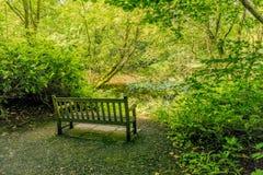 Стенд Parkland, усадьба Baddesley Клинтона, Уорикшир Стоковое Фото