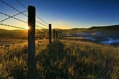 степь Монголии стоковое изображение rf