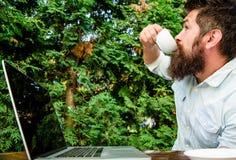 Стереотип трудоголика Работа кофе напитка более быстро Работник бородатого человека независимый r Независимый профессионал стоковое фото