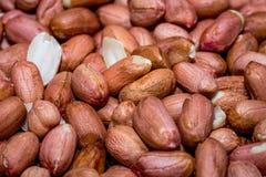 Стержени арахиса Стоковые Изображения RF