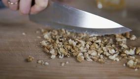 Стержени грецкого ореха вырезывания с ножом в замедленном движении акции видеоматериалы