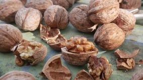 Стержени грецкого ореха и все грецкие орехи видеоматериал
