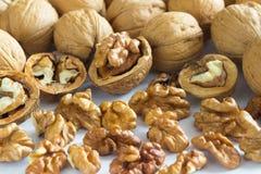 Стержени грецкого ореха и задавленные гайки на белизне Стоковая Фотография