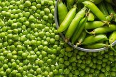 Стержени зеленых горохов Стоковая Фотография