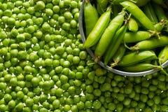 Стержени зеленых горохов Стоковая Фотография RF
