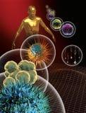 стержень клеток Стоковая Фотография