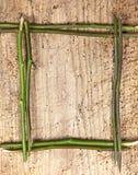 стержни граници Стоковое Изображение RF