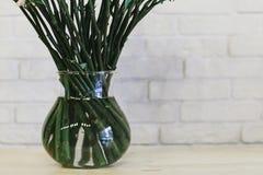 Стержни цветков в букете в вазе стоковое фото rf