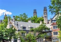 Стерлинговый Йельский университет New Haven Коннектикут лета юридического высшего учебного заведения Стоковое Изображение