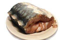 стерляжина мяса рыб Стоковое фото RF