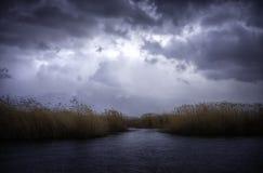 Стерня и озеро Стоковое Изображение RF
