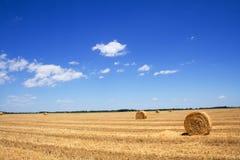 стерня сена поля bales стоковое изображение