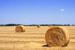 стерня сена поля bales Стоковые Изображения RF