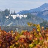 Стерлинговая винодельня в осени Стоковое Фото