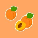 Стикеры дизайна с зрелым вкусным абрикосом Стоковые Изображения