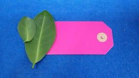 Стикер и листья цены Стоковые Фотографии RF