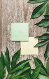 Стикер на старой деревянной доске с зеленым цветом выходит вокруг краев Стоковая Фотография
