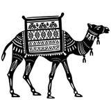 Стилизованная диаграмма декоративного верблюда Стоковые Фото