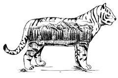 Стилизованной декоративной иллюстрация чернил вектора тигра нарисованная рукой Стоковые Изображения RF