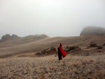 Стильная женщина представляя в туманной горе стоковые фото