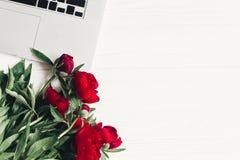 Стильная компьтер-книжка и красивые красные пионы на белом деревянном backgro Стоковое Фото