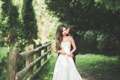 Стильные пары счастливых новобрачных представляя в парке на их день свадьбы Стоковая Фотография