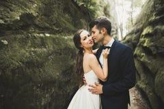Стильные пары счастливых новобрачных представляя в парке на их день свадьбы Стоковые Фотографии RF