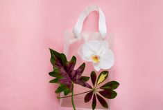 Стильный прозрачный светлый пакет для ходить по магазинам с орхидеей на розовой предпосылке, космосе экземпляра, крупный план, стоковые фотографии rf