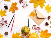 Стильный состав письма, тыкв, листьев осени, ягод Взгляд сверху на белой предпосылке Положение квартиры осени стоковое изображение