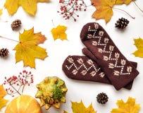 Стильный состав с тыквами, mittens, листьями осени, конусами Взгляд сверху на белой предпосылке Положение квартиры осени стоковые фотографии rf
