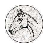 Стилизованная голова лошади Стоковые Изображения