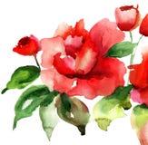Стилизованная иллюстрация цветков роз Стоковое Фото