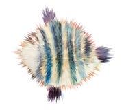 Стилизованные рыбы stock векторы и