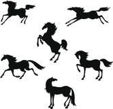 Стилизованный силуэт лошадей иллюстрация вектора