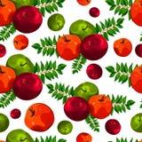 Стильная безшовная картина листьев и яблок Картина плодоовощ Предпосылка сбора Яблока красивая для поздравительных открыток, приг Стоковая Фотография RF