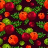 Стильная безшовная картина листьев и яблок Картина плодоовощ Предпосылка сбора Яблока красивая для поздравительных открыток, приг Стоковое Изображение